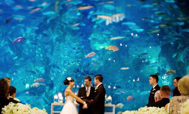 Unusual Wedding Venues Nyc