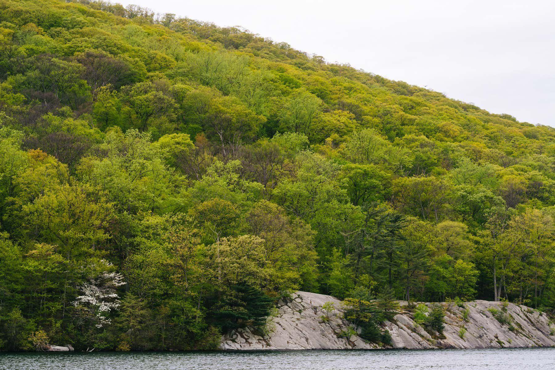 Rocky landscape along Hessian Lake, at Bear Mountain State Park, New York.