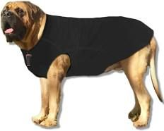 Herculean Dog Sweaters For Giant Breed Dogs 200 250 Lbs Dog Pics