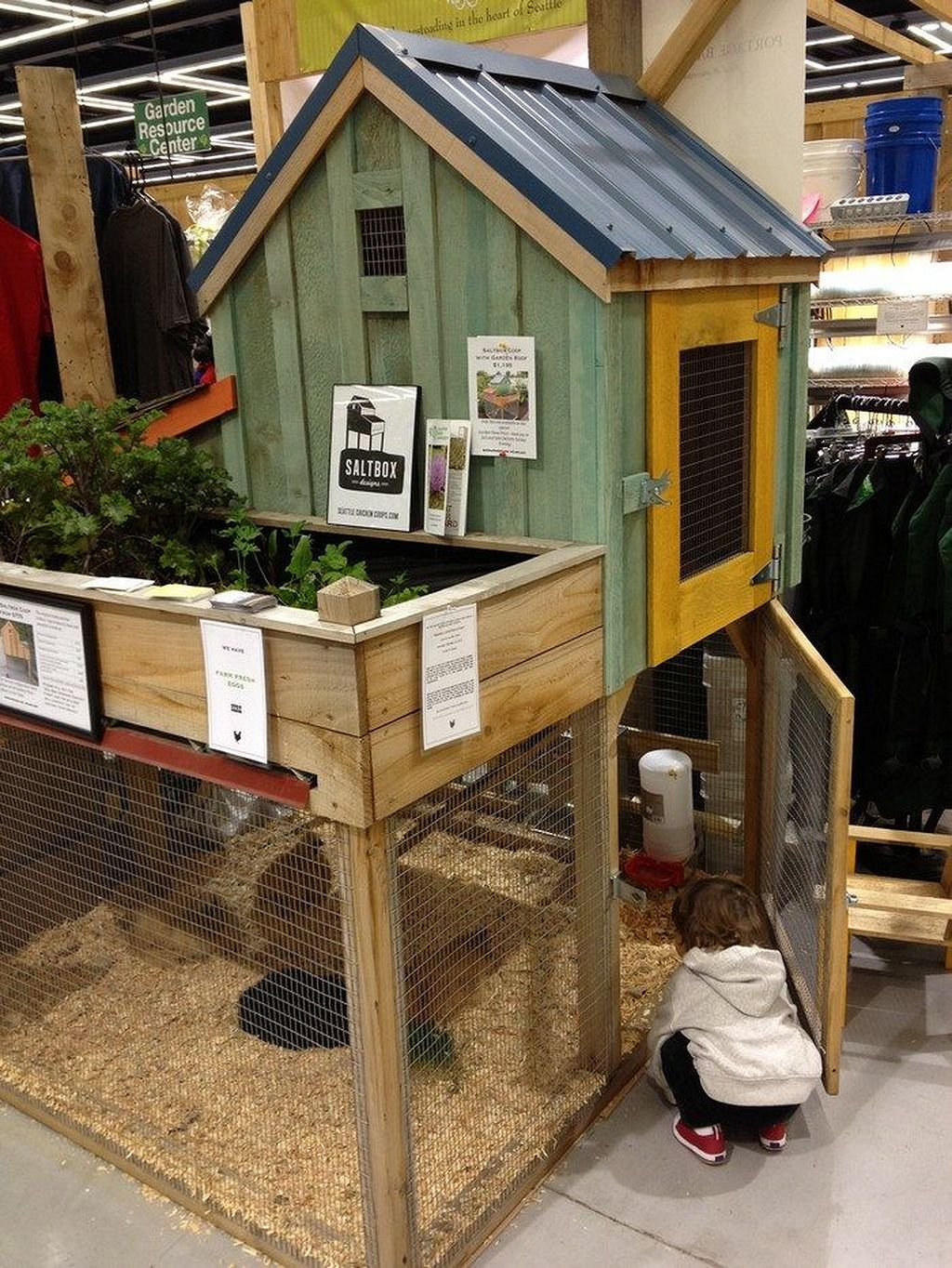 Pin by Garden Magz on Animals and Pets Chicken coop