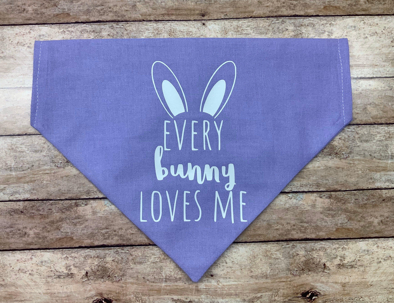 Easter bandana over the collar funny Chicks dig me dog bandana