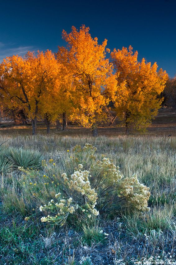 First Light Of Fall; John De Bord Photography