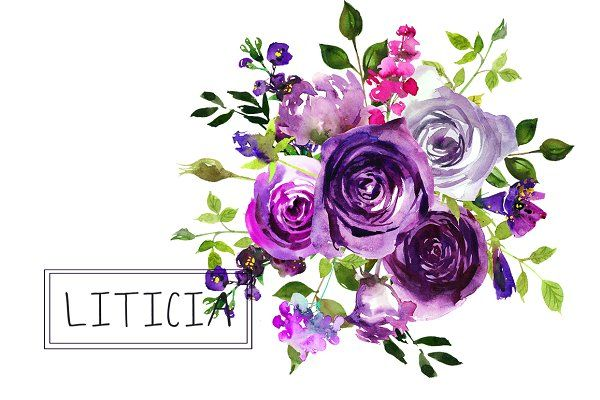 Purple Violet Flowers Clipart Set Illustrations Watercolor