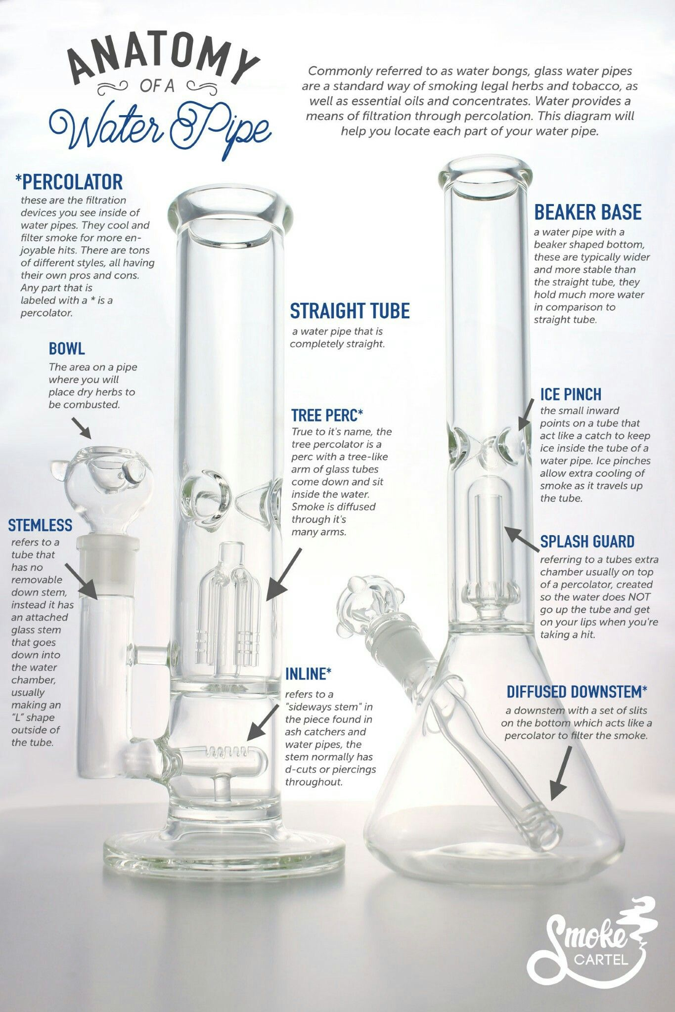 Anatomy of a Water Pipe | Glass | Pinterest | Water pipes, Glass ...