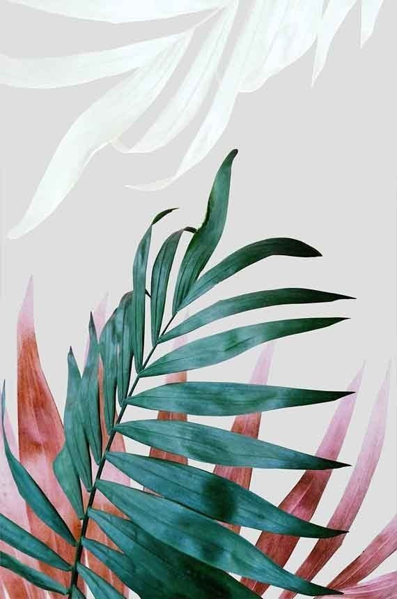 palm leaves green Botanical poster, Printable wall art