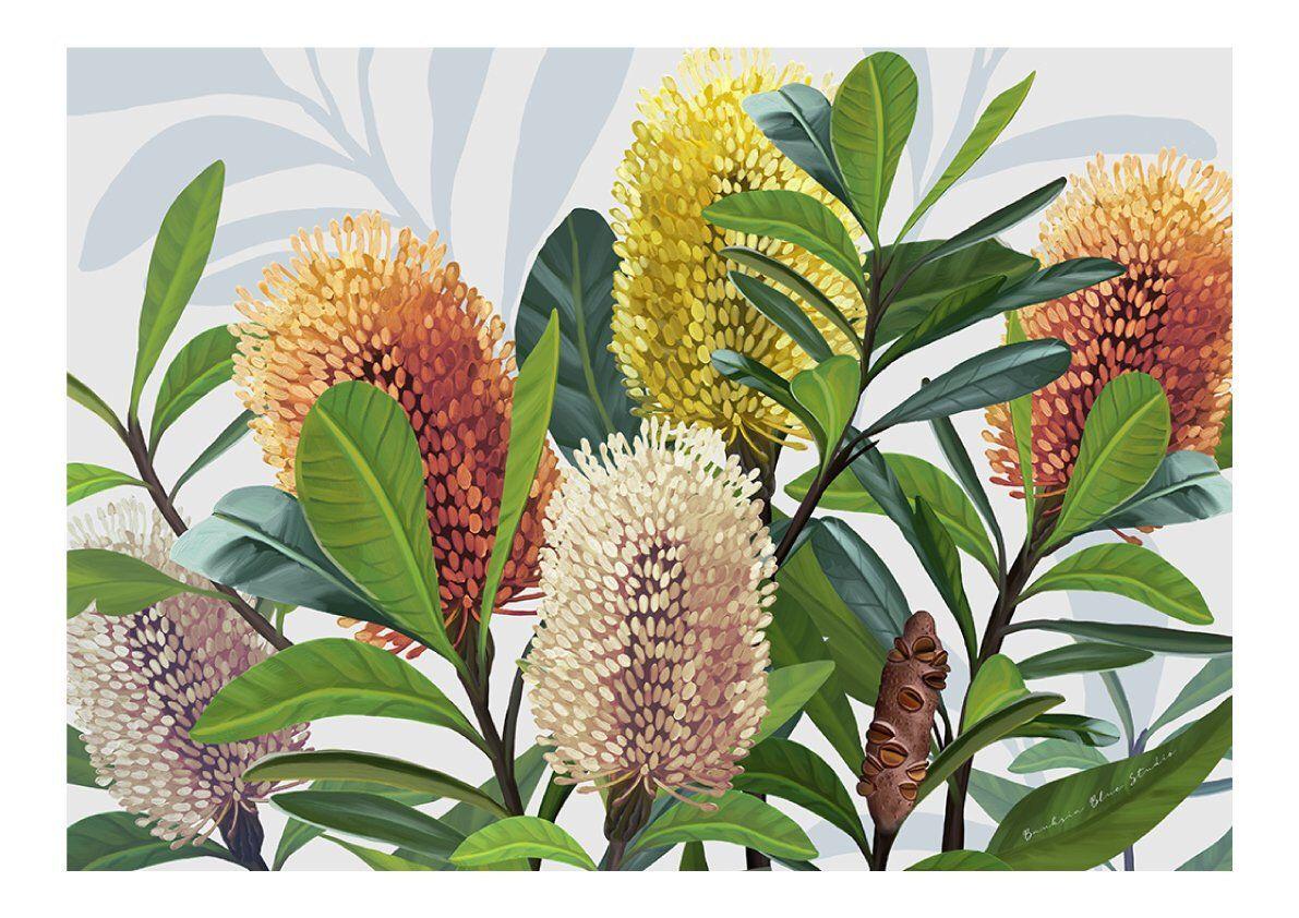 Botanical Australian Banksia Modern Art Original Wall Art Etsy In 2020 Australia Wall Art Beach House Wall Art Wall Art Prints