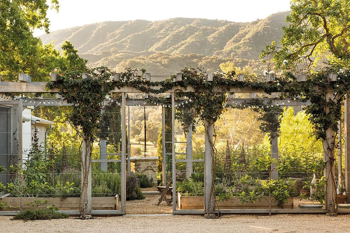Ojai+California.jpg (1200×800)   garden   Pinterest   Farming ...