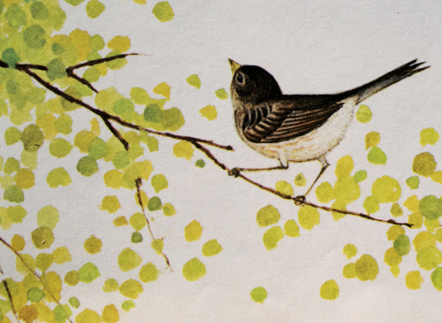 Come Follow Me… by Gyo Fujikawa, 1979 Such a cute little painting.