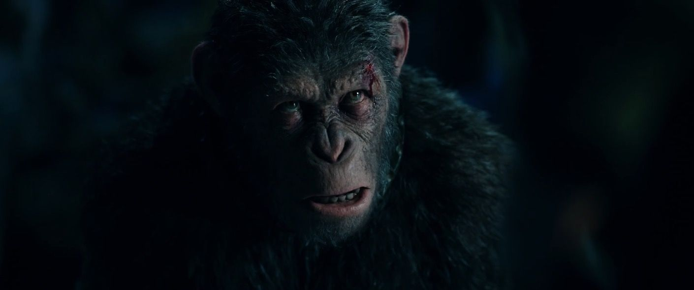 War For The Planet Of The Apes 2017 Photo Planet Of The Apes The Planet Of The Apes Apes