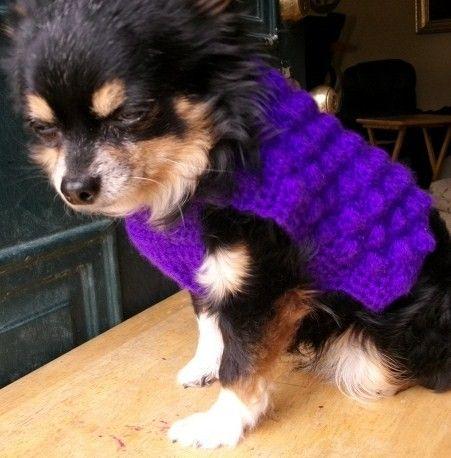 Dog Sweater Free Pattern Free Crochet Dog Sweater Patterns