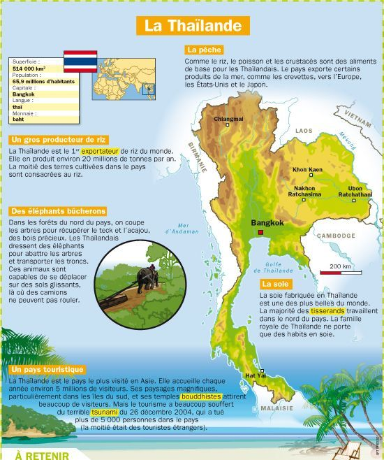 Educational infographic : La Thaïlande