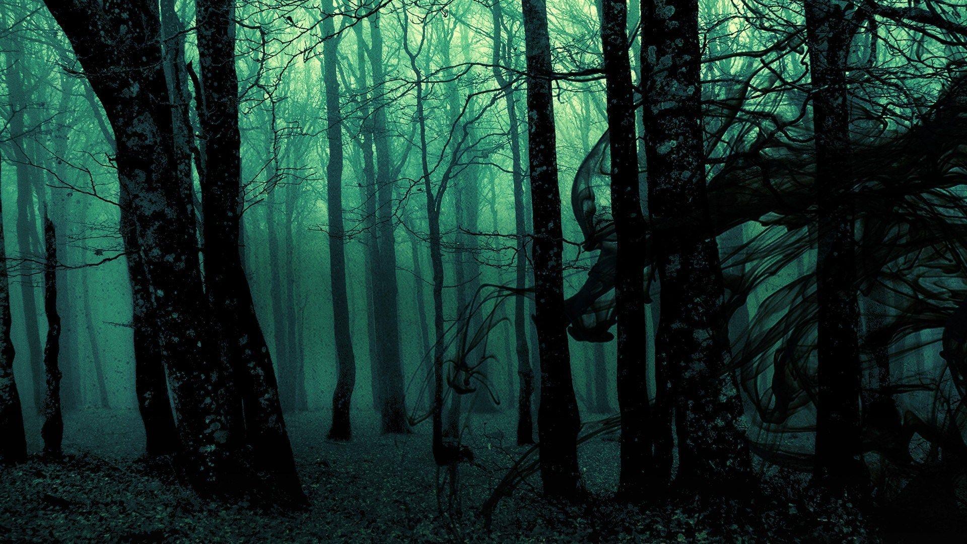Dark Woods Desktop Backgrounds