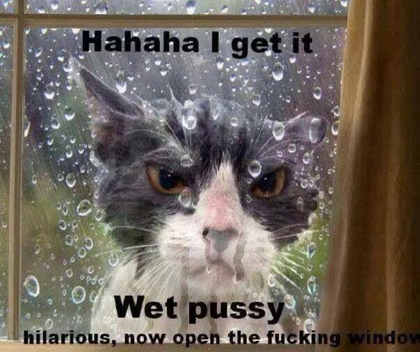 Wet Pussy...
