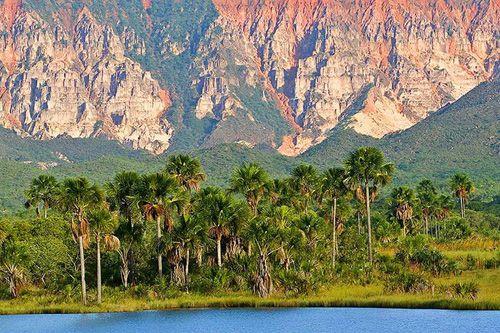 Lagoa Serra ~ Espírito Santo  Foto: Photo in Natura/Daniel De Granville