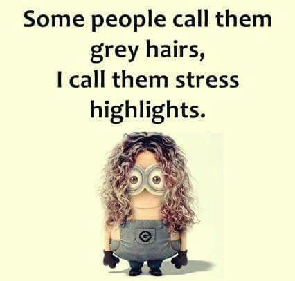 Grey Hair Funnies Minions Quotes Funny Humor