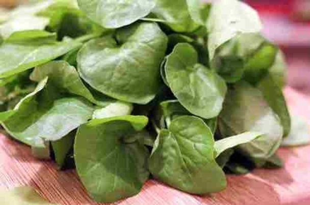فوائد الجرجير لا تعد ولاتحصى تعرف عليها Vegetables Spinach Food