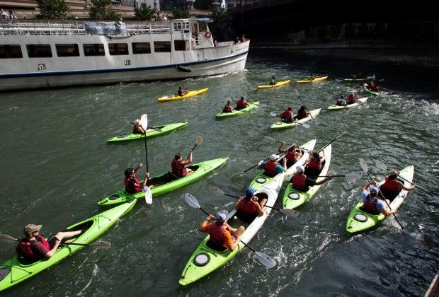 What's living in the Chicago River? from chicago mag