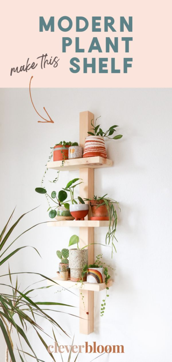 Photo of Easy Modern Plant Shelf DIY to Display Plants
