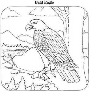 Printable Coloring Book Bald Eagle Page Animals