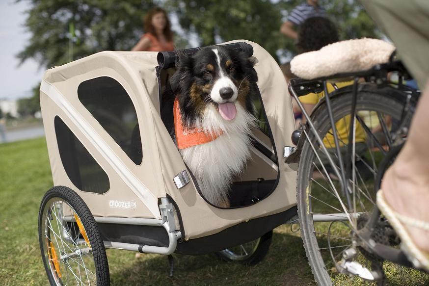 hondenfietskar, croozer dog, fietskar hond,