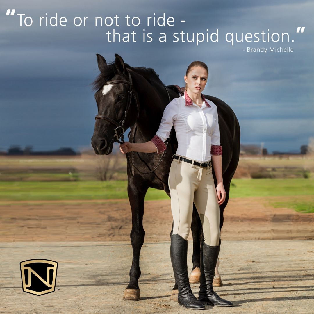 1 203 Likes 3 Comments Noble Outfitters Nobleoutfitters On Instagram Nobleoutfitters Motivationmo Funny Horses Horse Riding Quotes Horse Quotes Funny
