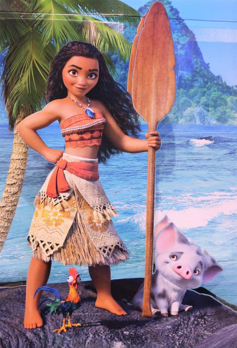 Critique Film Disney Vaana Le Rayon De Soleil