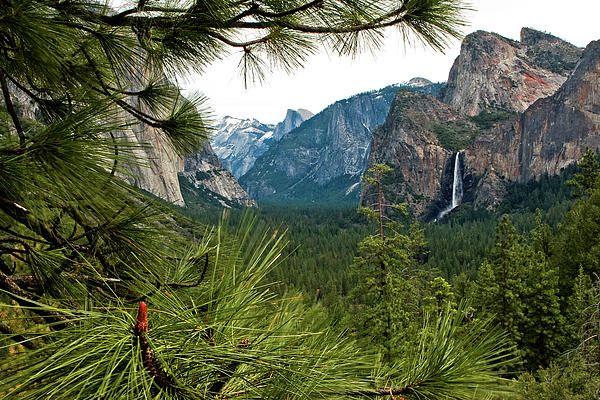 Yosemite From Tunnel View by Lorraine Devon Wilke ...