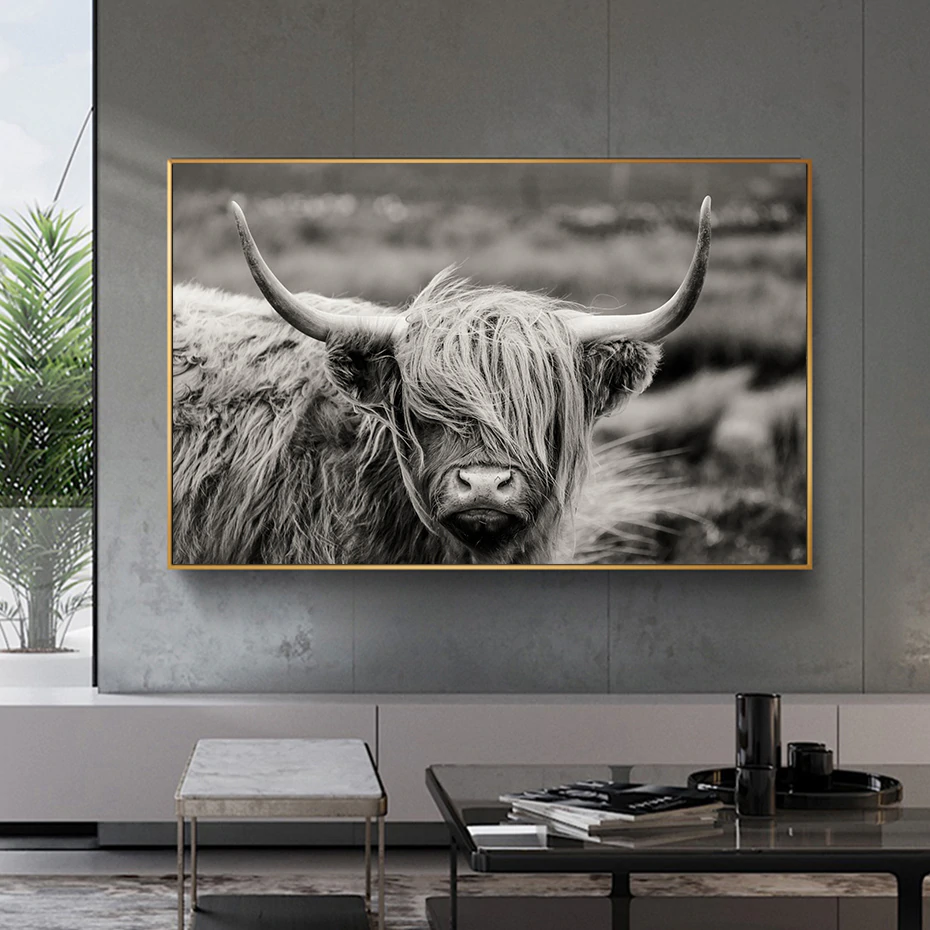 Scottish Highland Cattle Black And White Animal Wall Art