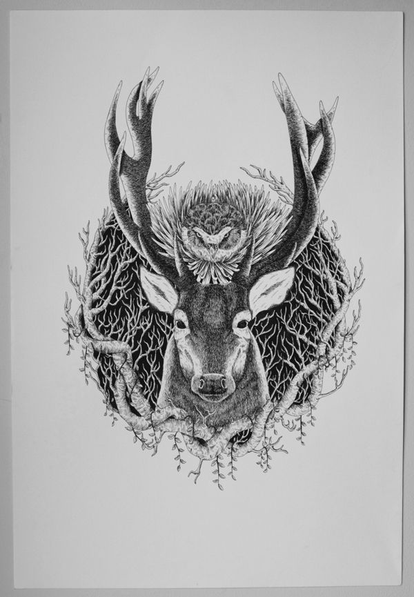owl deer sketch Art Art Art