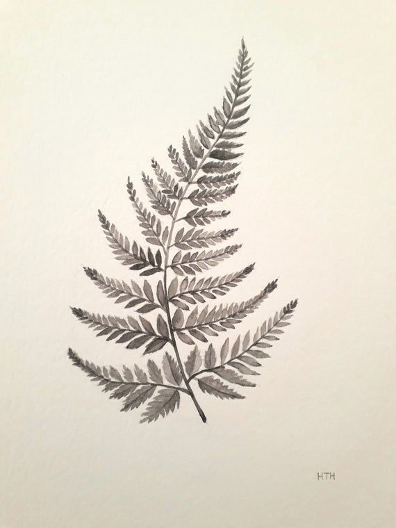 Fern painting – ORIGINAL watercolour botanical flower illustration painting on A5 paper