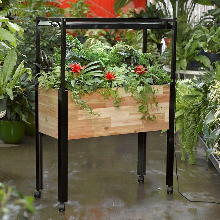 How to Grow a Kitchen Herb Garden - Indoor Planter with Lights