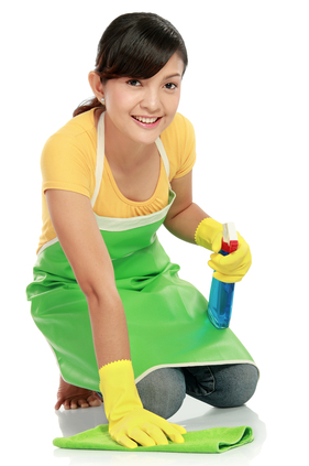 Top 4 Ingredients needed to make Homemade Cleaners! - The Repo Woman