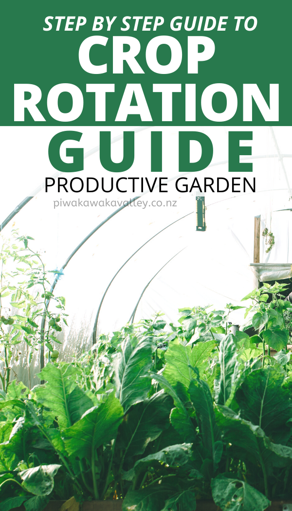 A Guide to Crop Rotation - Growing a productive garden in ...