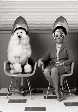 Aller chez le coiffeur. J'adore. Salon de coiffure