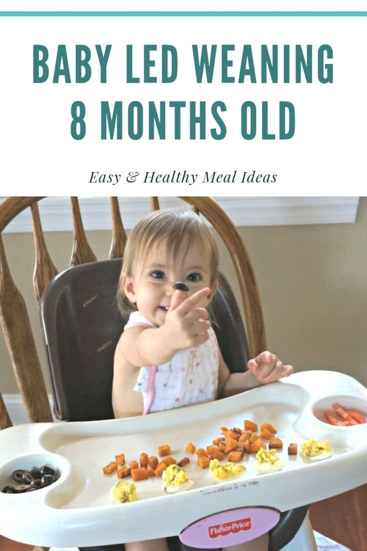 Baby led weaning meal ideas 8 months old 8 month old