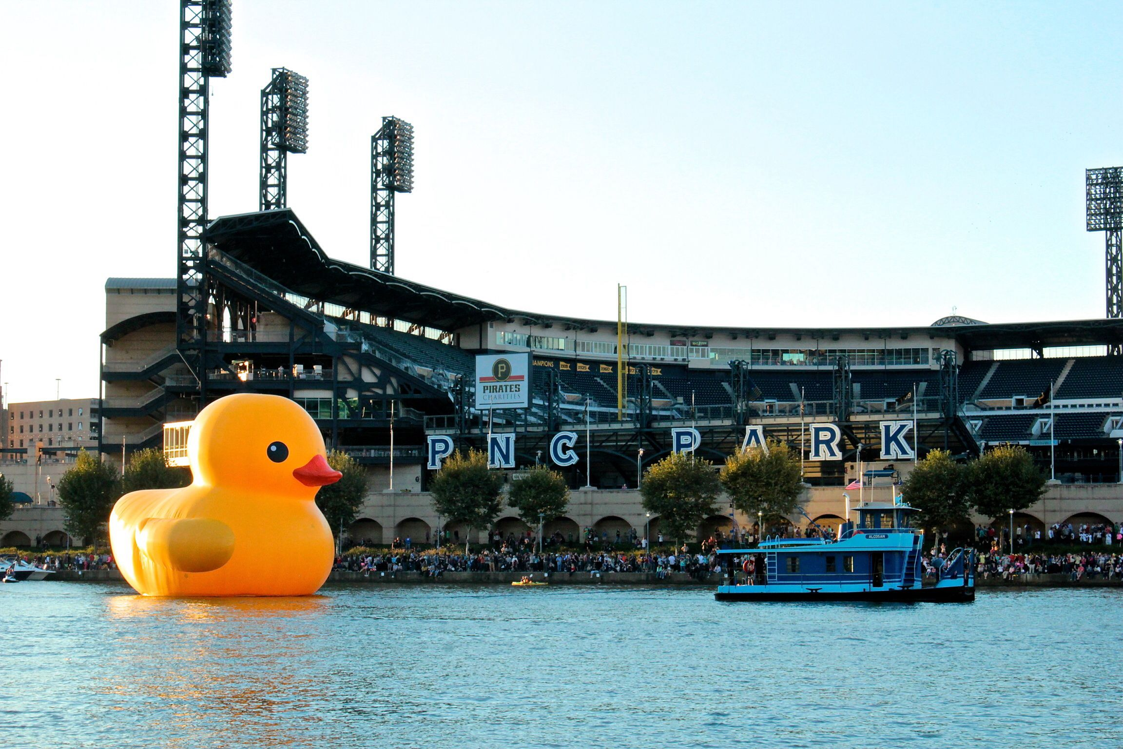 Giant Rubber Duck In Pittsburgh Pittsburgh City Pittsburgh Pittsburgh Pa