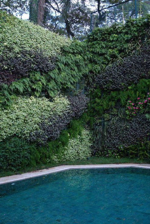 Piscina com muro verde piletas pinterest green walls - Green garden piscina ...