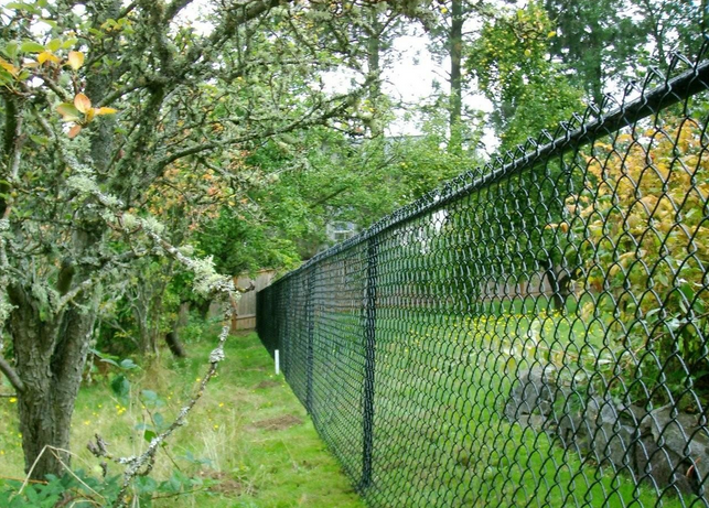 Заборы из сетки рабицы Забор Идеи озеленения Огород
