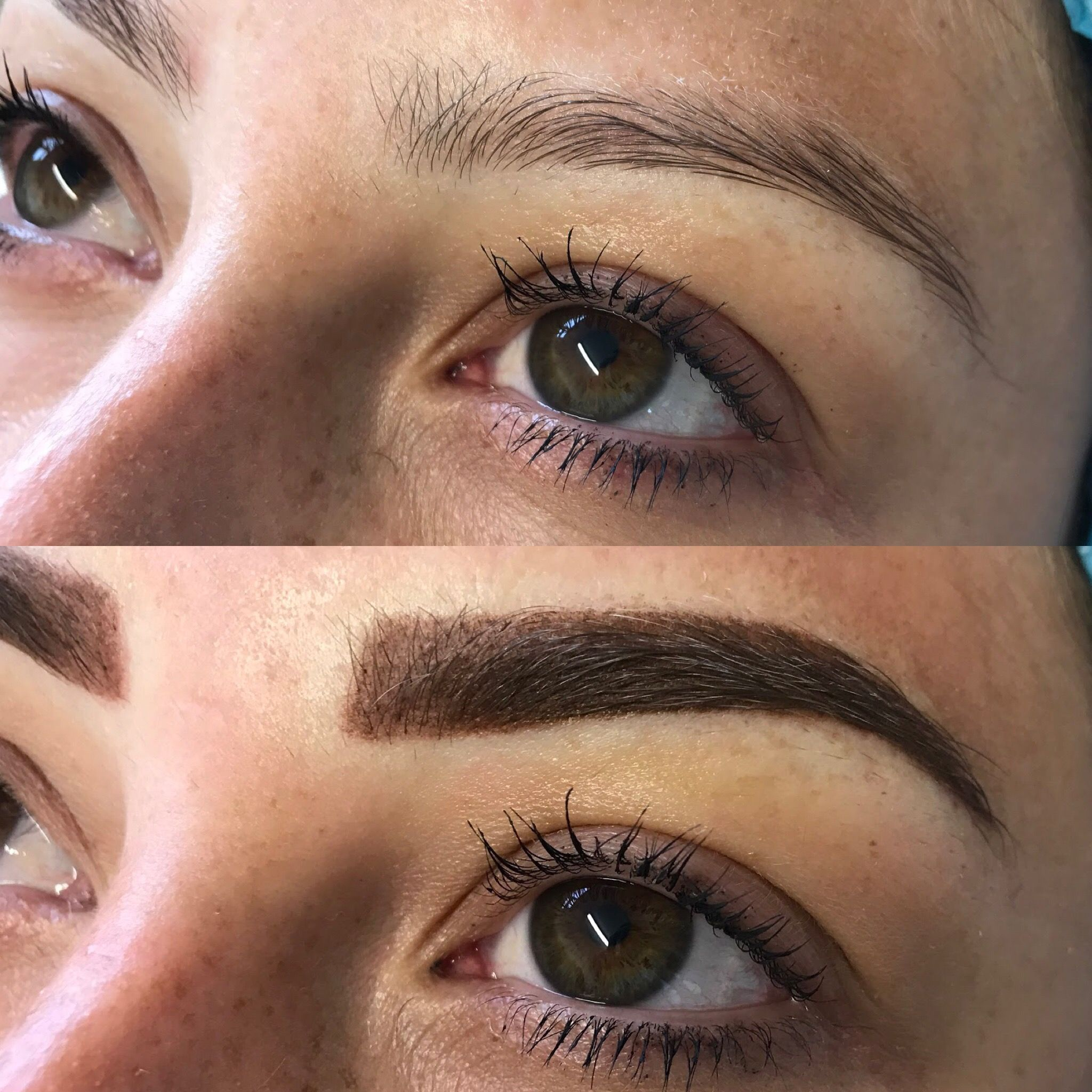 Ombré Brows created with Machine by Hollie Houston. Will