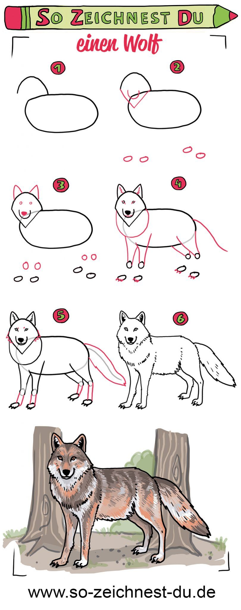 einen Wolf (mit Bildern) | Zeichenschule