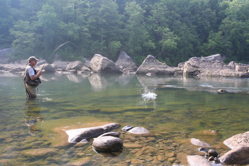 Best trout fishing in west virginia trout fishing in the for Fishing in gatlinburg tn