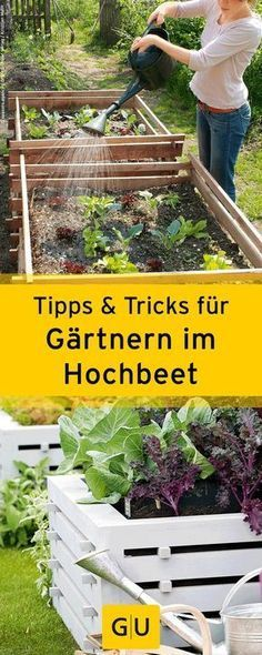 praktische tipps tricks f r das g rtnern im hochbeet gu garten pinterest praktische. Black Bedroom Furniture Sets. Home Design Ideas