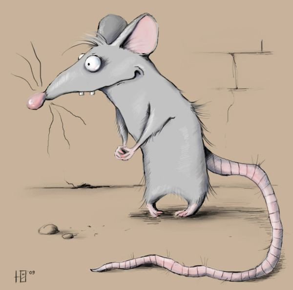 Открытки, смешная картинка крысы которая ждет