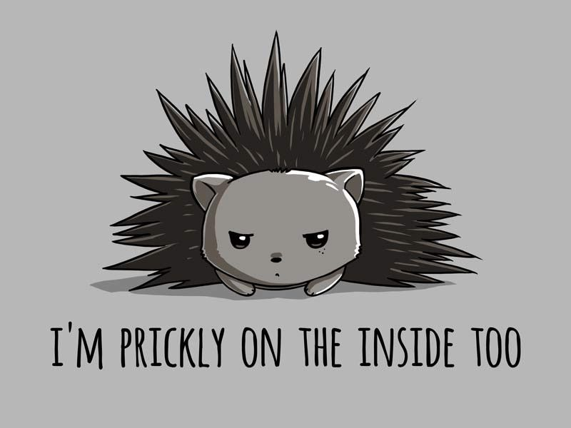 This little guy might be scratchy, but we promise the shirt will be super comfy! Get the Prickly on the Inside t-shirt only at TeeTurtle!