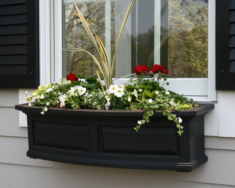I love the black window boxes!