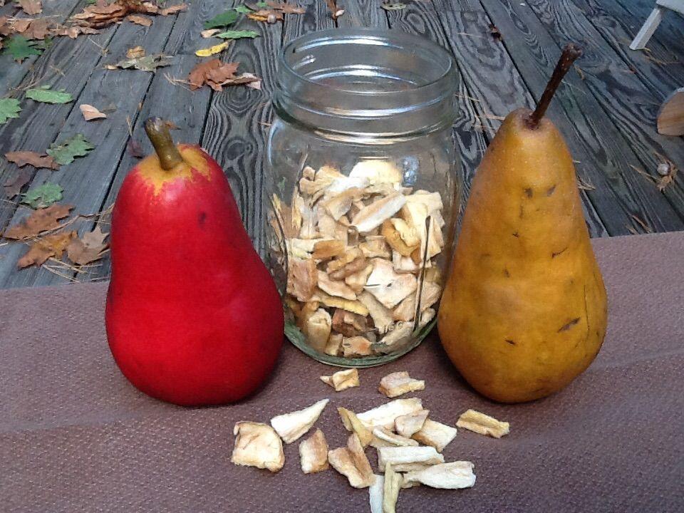A Pair of Pears | Lori Byrnes
