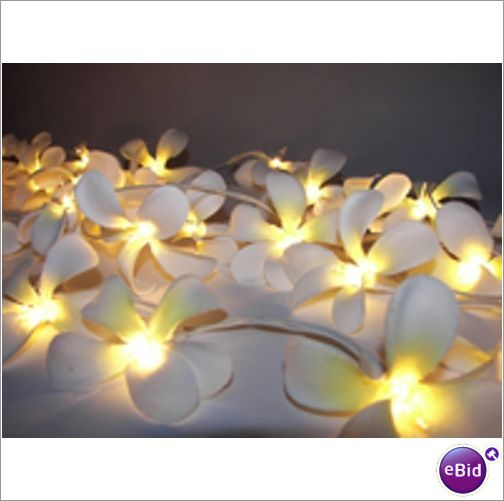 White Frangipani Flower Fairy Light String Party Porch