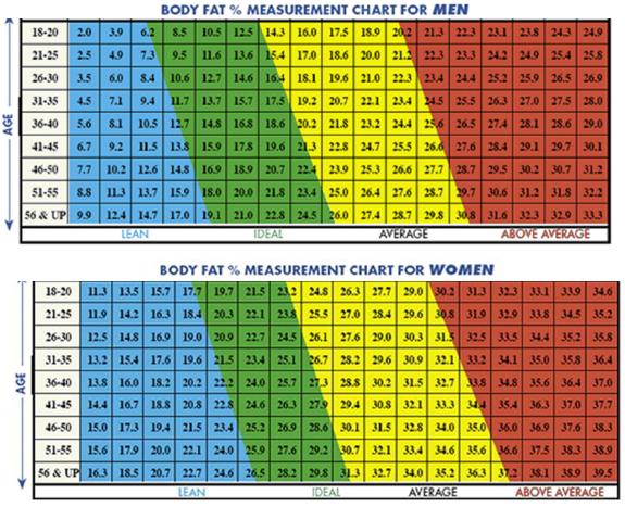 durnin womersley body fat percentage calculator