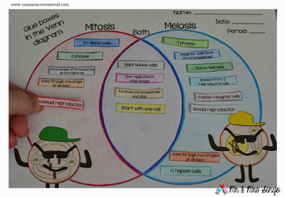 Mitosis vs Meiosis | Mitosis vs meiosis, Mitosis, Meiosis ...