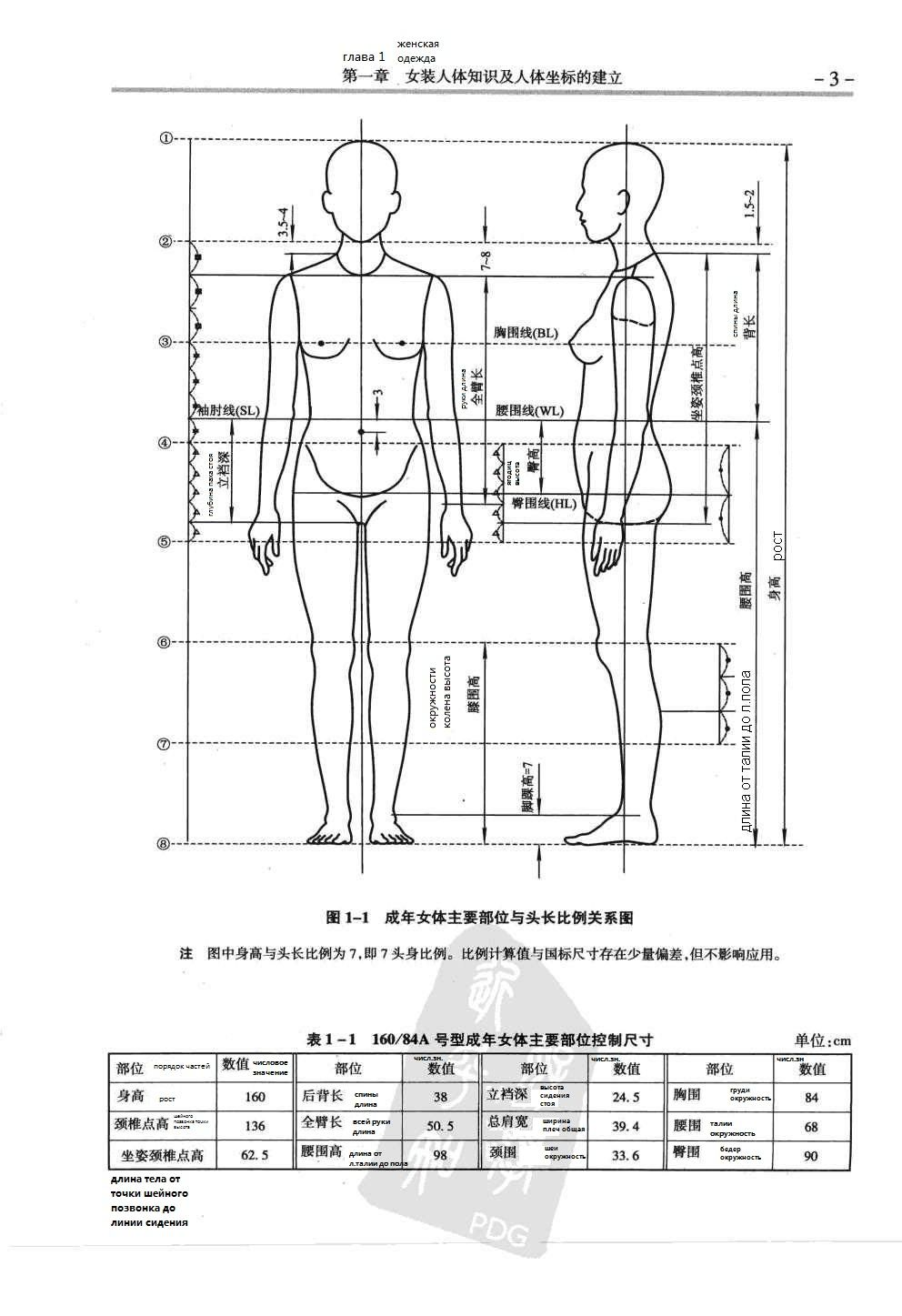 Chinese method of patternmaking proportion of the female body chinese method of patternmaking proportion of the female body used to build the pattern jeuxipadfo Image collections